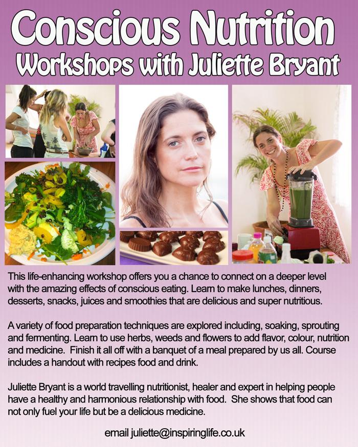 conscious nutrition workshop -web