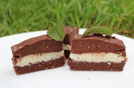 Raw Peppermint Patties